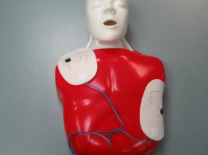 Adult AED Pads